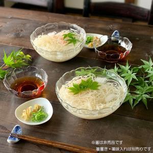 ガラス食器 麺鉢 そうめんガラス食器2人前セット アルカド そうめん鉢2個 小鉢2個 和食器 大鉢 小鉢 めん鉢|kitchengoods-bell