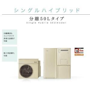 リンナイ ECOONE(エコワン) ダブルハイブリッド一体タイプ 暖房能力10.000kcalタイプ  100Lタンク 低炭素住宅|kitchenoutlet