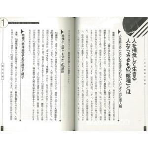 東京喰種:re CCG崩壊の記録/バーゲンブック|kitibousyouji|04