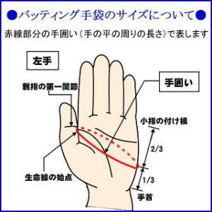 (即日発送)アシックス 守備用手袋 片手売り パッド付き 右手用 BEG370 kitospo 06