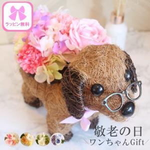 遅れてごめんね 母の日花ギフト おしゃれ 犬 可愛い 寄せ植え カーネーション 母の日プレゼント 造...