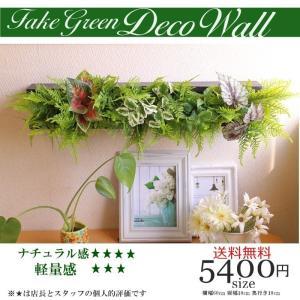 インテリア カフェ風 ナチュラル フェイクグリーン 超軽量  人工観葉植物 ブラック スチロール大量...