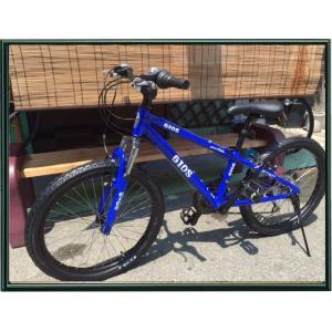 GIOS 子供用自転車  GENOVA 20インチ 子供用とは思えないシンプルでカッコいいデザイン kiuchi