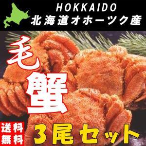 カニ かに 毛ガニ 毛がに 北海道産 カニ味噌 ボイル 冷凍...