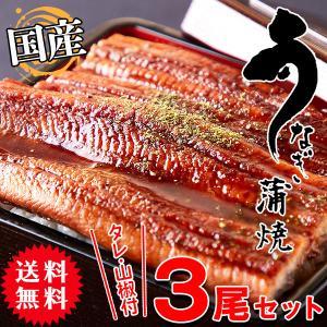 国産 うなぎ蒲焼 高級 土用の丑の日 ギフト 希少 3尾(タレ・山椒付き)|kiwami-honpo