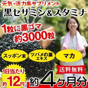 黒セサミン+スタミナサプリ サプリ 黒ゴマ 国産 日本製  サプリメント 送料無料 大量 ポイント消化  約4ヵ月分 〔120日分×1袋〕〔発送まで1~2週間〕|kiwami-honpo