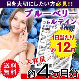 ブルーベリー&ルテインサプリ 国産 日本製  サプリメント 送料無料 大量 ポイント消化  約4ヵ月分 〔120日分×1袋〕〔発送まで1~2週間〕|kiwami-honpo