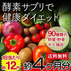 野菜酵素 野草酵素 サプリ ダイエット 国産 日本製  サプリメント 送料無料 大量 ポイント消化  約4ヵ月分 〔120日分×1袋〕 〔メール便出荷〕|kiwami-honpo
