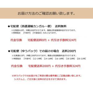 フラップボディバッグ  送料無料  訳あり品  収納抜群 ボディーバッグ |kiwaza-shop|06
