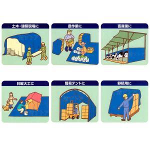 ブルーシート 2.7m×3.6m 厚手 ♯3000 建築、農業、レジャー、いろいろな場面に! kiyo-store 03