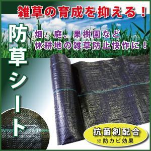 大型商品B/防草シート 2m×50m ブラック 草よけ・防草に!雑草防止被覆。|kiyo-store