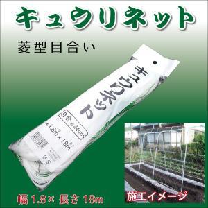 キュウリネット 菱目24cm 幅1.8m×長さ18m  農業用・園芸網。つる性植物の栽培に。家庭菜園に! シンセイ|kiyo-store