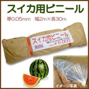 【スイカ用 ビニール】 厚み0.05mm 巾200cm×長さ...