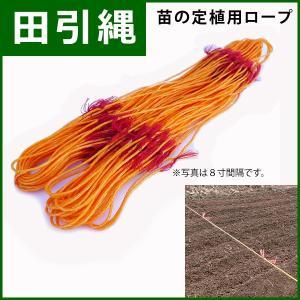 【田引縄】 苗の定植用ロープ 目印5寸間隔 長さ56m かもめ印 田植え・畑の目印に最適! AC|kiyo-store