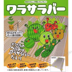 ワラサラバー 巾1m×長さ10m 敷きわら代用シート 路地の夏秋野菜栽培、夏場の蒸散帽子に適しています シンセイ kiyo-store