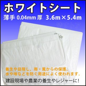 【ホワイトシート】厚0.04mm 3.6m×5.4m 10枚組 薄手白シート 建設現場や農業の養生やレジャーに! KU|kiyo-store
