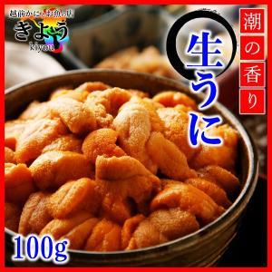 【生うに『100g』】Aグレード/高品質/すっきりした味わい...
