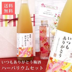 梅酒 ギフト 母の日 とろり梅酒 ハーバリウム 黄桜 伏水蔵直送