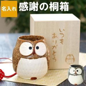 古希 喜寿のお祝い 湯呑み茶碗 おしゃれ 茶碗 名入れ プレゼント 名前入り ギフト 美濃焼 感謝の 桐箱入り ふくろう 湯飲み 梟 フクロウ 60代 70代|kizamu