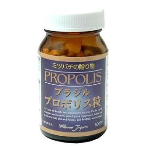 ブラジルプロポリス粒 500粒|kizashi