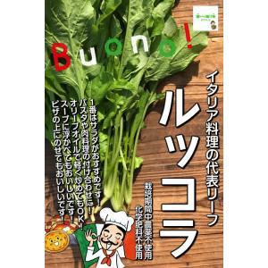 ルッコラ(ロケット、ロケットサラダ) 栽培期間中農薬不使用・...