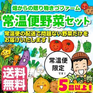 【送料無料 (常温の宅配便限定) 】 常温便野菜セット 5品! ※葉物野菜は入りません。