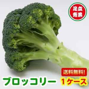 長野県産、他など ブロッコリー 1個