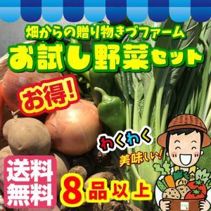 【送料無料(配送会社選択不可)】お試し野菜セット 全国各地の選りすぐりの農薬不使用・化学肥料不使用のものなども取り揃えて7品以上!|kizufarm