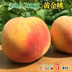 送料無料 訳あり 味極み 葉とらず 黄金桃 減農薬 長野県 ...