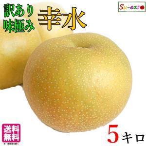 家庭用  完熟 梨 幸水 減農薬 長野県産 5キロ