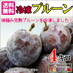 冷凍 プルーン 減農薬 長野県産 4キロ