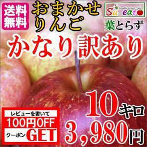 かなり訳あり  長野産 サンふじ りんご 減農薬 10キロ