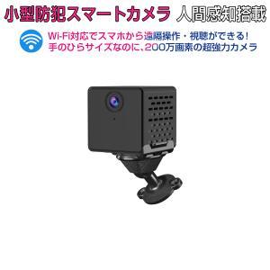 小型 防犯カメラ C90S VStarcam フルHD 200万画素