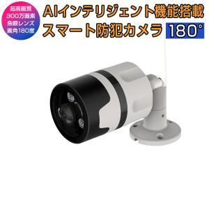 防犯カメラ C63S ペットカメラ 200万画素 魚眼レンズ 屋外 屋内 無線WIFI SDカード録画 監視 ネットワーク IP WEB カメラ Vstarcam PSE 技適 1年保証 K&M|km-serv1ce