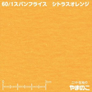60/1スパンフライス シトラスオレンジ 春夏素材向けリブ ストレッチ ニット生地|knit-yamanokko