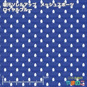 ニット生地 吸汗速乾メッシュスポーツ ロイヤルブルー「犬服、スポーツ向け」 knit-yamanokko