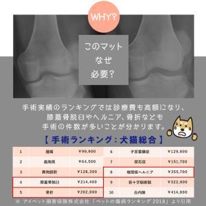 ペットマット 犬 猫 おしゃれ 大きめ ズレない 大判 フローリング 滑り防止 フロアマット 防水 ecf02 knktrading 06