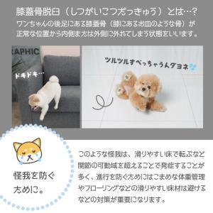 ペットマット 犬 猫 おしゃれ 大きめ ズレない 大判 フローリング 滑り防止 フロアマット 防水 ecf02 knktrading 07
