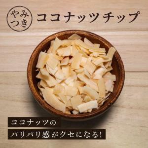 ココナッツチップス 100g 単品 乾燥果実 ドライフルーツ ココナッツ 食物繊維 ヤシの実 乾燥ヤシの実|knopp