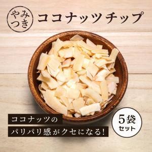 ココナッツチップス 100g 5袋セット ヤシの実 乾燥ヤシの実 乾燥果実 ドライフルーツ ココナッツ 食物繊維|knopp