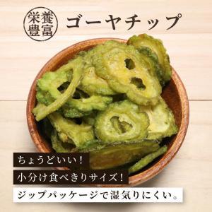 ゴーヤチップ 野菜チップ 90g 単品 1袋 ドライフルーツ ゴーヤチップス 栄養満点|knopp
