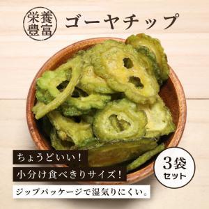 ゴーヤチップ 野菜チップ 90g×3袋セット ゴーヤチップス 珍味 おつまみ 栄養満点|knopp