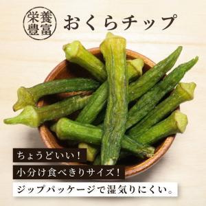 おくらチップ 野菜チップ 80g 単品 1袋 ドライフルーツ 乾燥野菜 オクラチップス 栄養満点|knopp