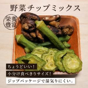 野菜チップミックス 野菜チップ 100g 単品 しいたけ おくら ゴーヤ 健康食 おやつ おつまみ|knopp
