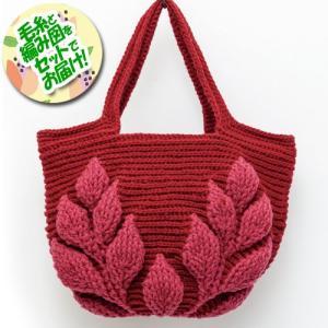 ハマナカ ボニー2色で編む 編み込みリーフ柄の引き上げ編みバッグ 赤系 着分セット(ボニー計10玉・...