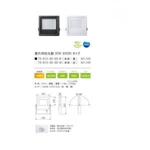 LED 屋外用投光器 TS-810-30-57-B ブラック 30W 5700K 3600lm テスライティング TESLIGHTING|ko-te-ya