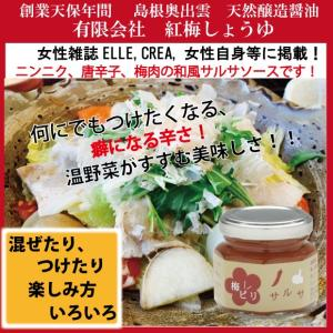サルサソース 超ピリ辛 こだわりのスパイシー和風ソース 紅梅しょうゆ梅ピリサルサ 島根産にんにく 梅肉 唐辛子使用|kobai-shoyu