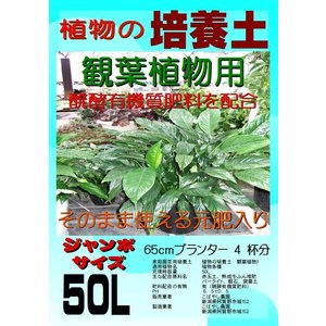 観葉植物の培養土(有機質肥料入り) ジャンボサイズ40L kobanoh1