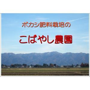 こばやし農園「発芽玄米(小豆入り)コシヒカリ」1kg  令和2年産  新潟県産 特別栽培米 kobanoh1 04