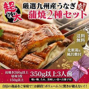 超特大 蒲焼2種セット